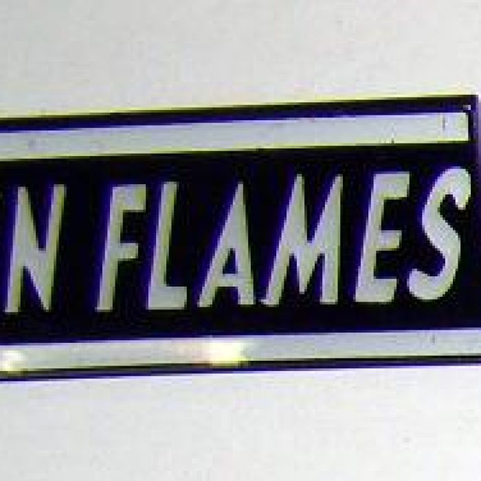 Pin In Flames