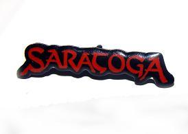 Pin Saratoga